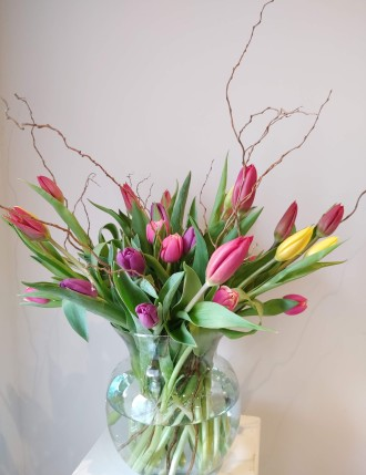 Tulips and Willow