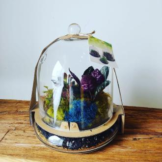 Glass Cloche Terrarium