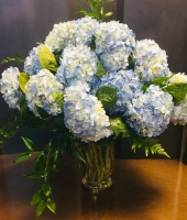 Colonial Blue Hydrangea Bouquet