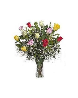 Stein Dozen Assorted Roses
