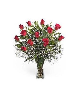 Stein Dozen Red Roses