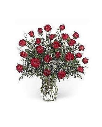 Stein 2 Dozen Red Roses