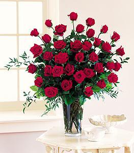 Stein 3-dozen Roses
