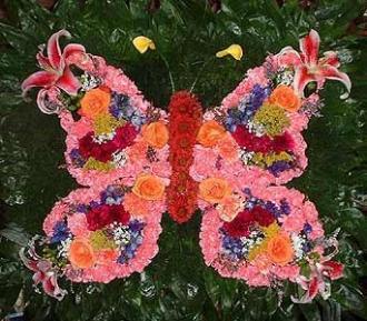 Stein Butterfly Special Design Piece