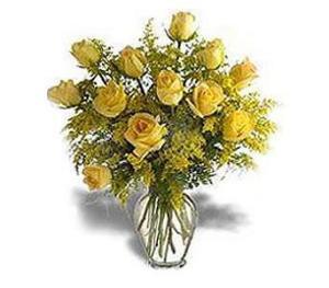 Stein Rose Special
