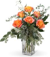 Free Spirit Roses (6)
