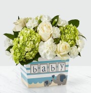 Welcome Baby Boy Bouquet