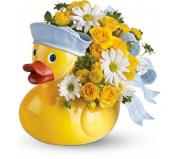 Ducky Delight – Boy