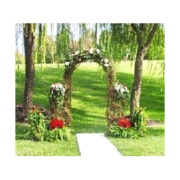Grapevine Arch with Column Sides
