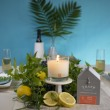 Trapp Amalfi Citron Poured Candle