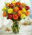 18 Premium Autumn Roses