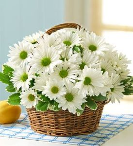 Daisy Days Basket