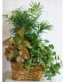 Lovely Leaves Basket