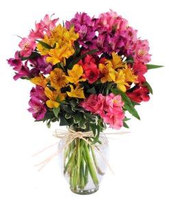 Peruvian Lily Bouquet
