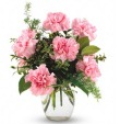 Pink Perfection Carnation Bouquet