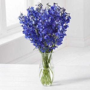 The Blues Bouquet