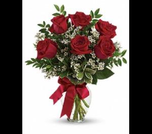 Six  Long Stem Red Roses