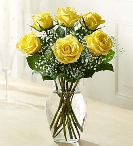 Long Stem Yellow Roses