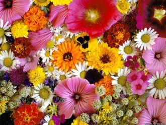 Large Florist Design Bouquet