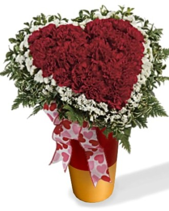 My Heart is Yours carnations