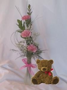 Carnation Vase and a Teddy Bear