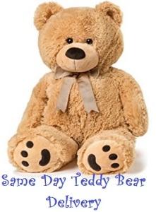 Teddy Bear Gift