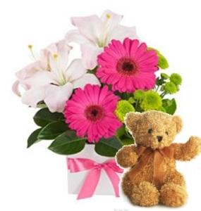 Princess Kayden Bouquet and a Teddy Bear