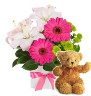 Princess Kayden Bouquet and a Teddy Bear