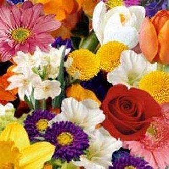 Mixed Seasonal Funeral Arrangement