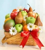 The All fruit Basket