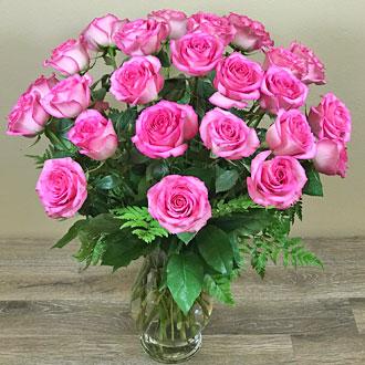 Enchanting Pink Roses