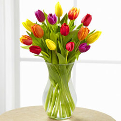 Skagit Valley Tulips Bouquet