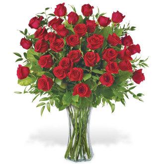 3 Dozen Long Stem Roses