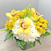 Yellow and White Embrace with Orchids