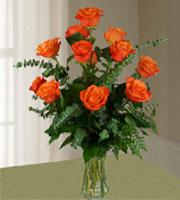 Dozen Long Stem Orange Roses