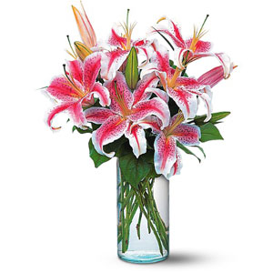Lovely Lillies
