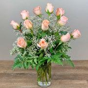Dozen Tiffany Peach Roses