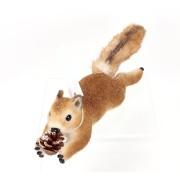 Climbing Squirrel