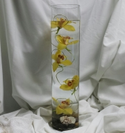Submerged Orchids
