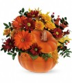Teleflora's Country Pumpkin by CCF