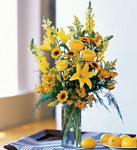 Burst of Yellow - by Charleston Cut Flower Co.
