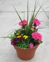 Caan Floral - Mothers Garden