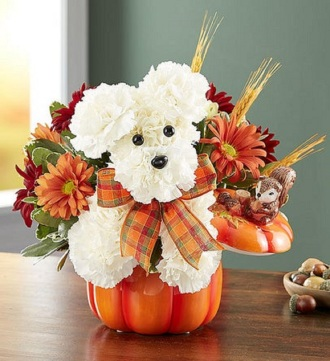 A Dog-able for Fall