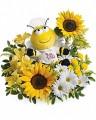 Bee Well Bee
