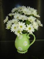 ST. PATRICK'S DAY KEEN IRISH DAISIES