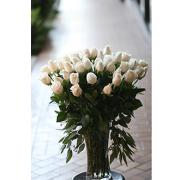 White Rose Celebration Arrangement
