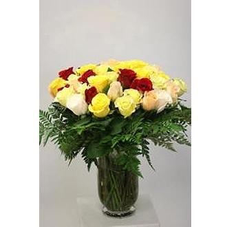 52 roses vase