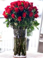 5 Dozen Roses Arranged