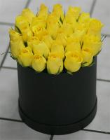 Yellow Rose Contempo