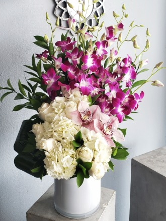 Purple Orchid Hydrangea